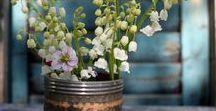 Pick a pot, any pot / Love the rustic feel of plants and flowers in all different kinds of containers