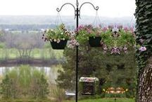 GARDEN - Small Garden Ideas / Gardening in small spaces / by Baby to Boomer Lifestyle