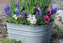 DIY Outdoors / by Peggy Redmon