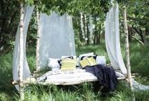 Gardening Mahem / by Shannon Kennedy-Kahler