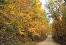Autumn in Missouri / Missouri's foliage from west to east and south to north. / by Anita Brooks - Author