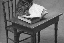 Animals like Books too