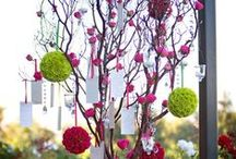 Wedding Wishing Trees / Manzanita trees are a fantastic way to create a display or wishing tree at a wedding; check out our board for ideas.