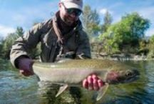 Fishing Images & Inpiration / Images & Inspiration from Eddie Bauer Fishing Guides / by Eddie Bauer