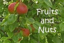 NE - Fruits and Nuts / What fun ideas to enhance the NaturExplorers Fruits and Nuts study!