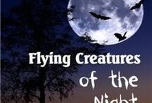 NE - Flying Creatures of the Night