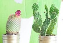 Cactus Cool / Cactus party ideas and other cactus love. / by Tori Tait | Thoughtfully Simple