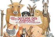 www.defense-animaux.ch / les photos de notre site web
