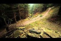 Welsh MTB Trails / by Wheelies.co.uk