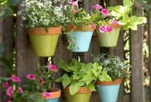 Outdoor Decor  / by Lisa McConomy