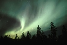 Northern Lights / by Johnna Percell