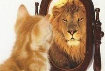 Kernwaarden: Versterken / Empowerment