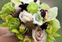 Katherine's somday Wedding Ideas