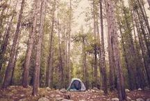 let's adventure! / camping love & outdoor adventuring. / by Rebecca H