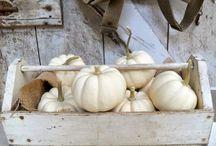 ~Ivory Autumn L@ne~ / by Lisa Huckaby