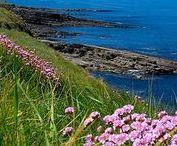 Travel Ireland / Travel in Ireland
