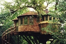 Me, Jane! / I've got a serious treehouse jones, and love little spaces to hide-away. / by Dana Parkes