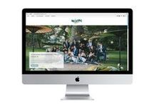 Website Design ideas / Grizzly Bear Design / web design / website design / websites for photographers / graphic design