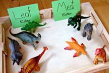 Dinosaur Theme / by Sarah @ Stay At Home Educator