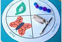 Bugs and Butterflies Preschool Theme / Bugs preschool activities, butterfly preschool activities, butterfly preschool crafts, bugs preschool crafts, bug preschool books, butterfly books for preschool, bugs preschool art, butterfly preschool art, bugs preschool games, bug preschool lessons, butterfly preschool lessons, bug preschool songs, butterfly songs, bugs and butterflies preschool ideas, bugs preschool learning activities.