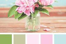 Colour Palettes Ideas / Grizzly Bear Design / colour / colour palette / colour scheme / branding / branding for photographers / graphic design / web design