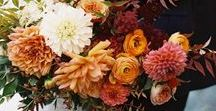 Herbst - Sträuße & Blumen / Auch der Herbst kann mit wunderschönen Blumen auftrumpfen und steht dem Frühjahr oder Sommer in Nichts nach. Auf dieser Pinnwand sammeln wir für Euch Herbstblumen und Sträuße, die wir besonders hübsch und passend für eine Herbsthochzeit finden. Klassische Herbstblumen sind z.B.:  Alpenveilchen, Chrysanthemen , Dahlien, Astern, Lampionblumen, Lavendel, Sonnenblumen, Herbst-Anemonen, Herbst-Blaustern, Hortensien, Zinnien.