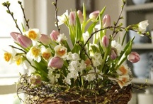 Springtime Blooming / All things spring in interiors, tablescapes, wreaths and more.