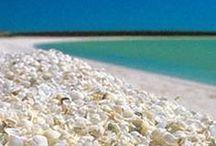 Shell Beaches Bucket List / Shell beaches on my bucket list!