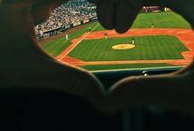 The Baseball Life