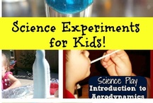 Education:  Science Fun / by Debbi Kassin