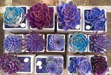 Garden Ideas / by Cheryl Wilson