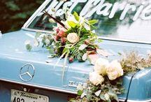 >Lover's Lane<