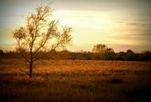 Beautiful Kansas / Showing the full breadth and beauty of bicycling in the Sunflower State!