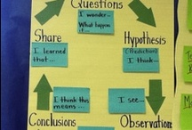 Science Notebooks, Foldables, Anchor Charts / by Ann Biedenweg