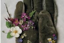 Beautiful flowers make beautiful work / by Ted Lange
