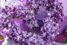 Wedding - Purple