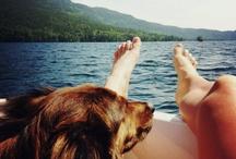 lakeside / by Courtney Bachmann