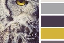 Colour Combinations / by Caroline Lawton