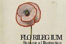 Ephemera and Bothanical illustrations