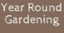 Year Round Gardening / Year Round Gardening.  This board is all about growing a garden all year long.  You will find pins on Summer Gardening, Fall Gardening, Winter Gardening and Spring Gardening.   **This board is open to contributors - Max 2 Pins per day. Must be on topic, no recipes no Food Preservation- Message board owner to be added.