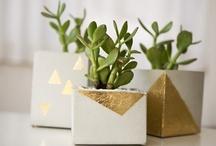 DIY > flower pots inspiration
