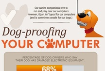 Dogproof your computer