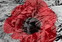 Remembrance - Our Armed Forces