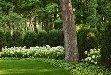 Outside.Garden.Patio