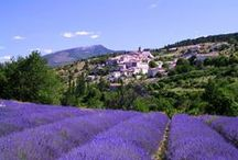 All Things Provençal / Provence!!! The South of France!!! Heaven On Earth!!! / by Jonathan B. Pons