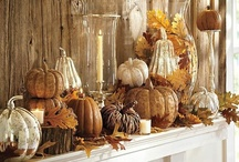 Fall  / Halloween, Thanksgiving and all things FALL!  / by Ashtin Midgett