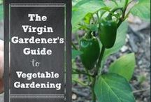 """Green Thumbs / Who knew gardening would become my """"thing"""".... / by Ashtin Midgett"""