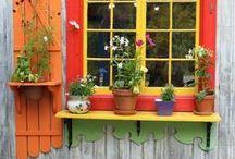 window boxes / window boxes / by Wanda Scott
