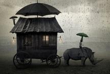 gypsy life.... / by Peggy Cox