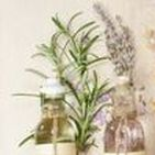 essential oils / types and uses